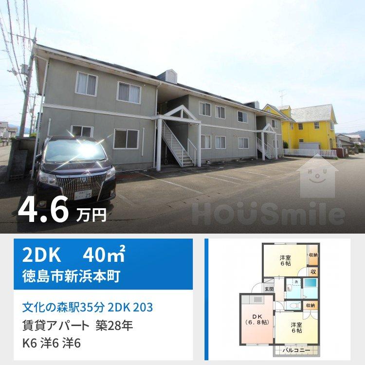 文化の森駅35分 2DK 203