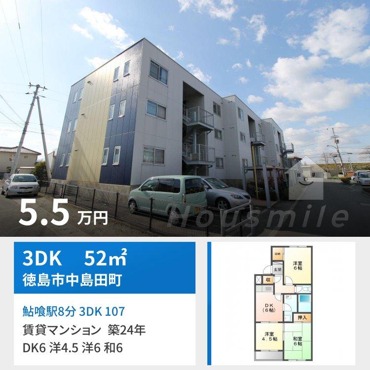 鮎喰駅8分 3DK 107